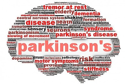 Parkinson's Disease, Fresh River Healthcare, Neuro-behavioral program, iCare Health Network, Support Group